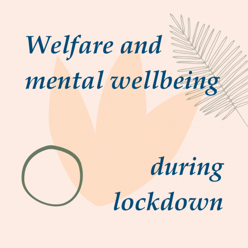 Welfare and mental wellbeing during lockdown